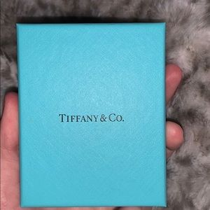 Tiffany & Co. Jewelry - Tiffany double heart tag pendant NEVER WORN
